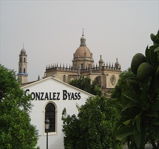Jerez Cathedral and GB bodega