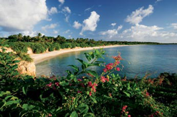 stylish villas and beach houses in Barnes Bay, Anguilla