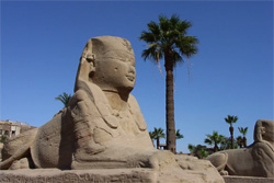 stylish places to stay in luxor, egypt