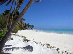 punta cana hotels and luxury villas