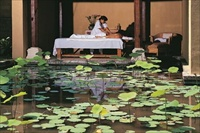 Indonesia Bali massage by lily pond
