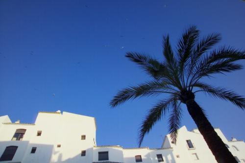 Marbella, Costa del Sol, Malaga in Andalucia, Spain