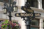 rodeo drive hollywood la
